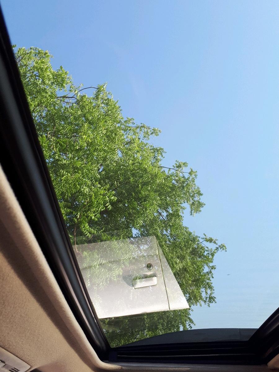 Cars for Sale_Lexus_Ras Al Khor