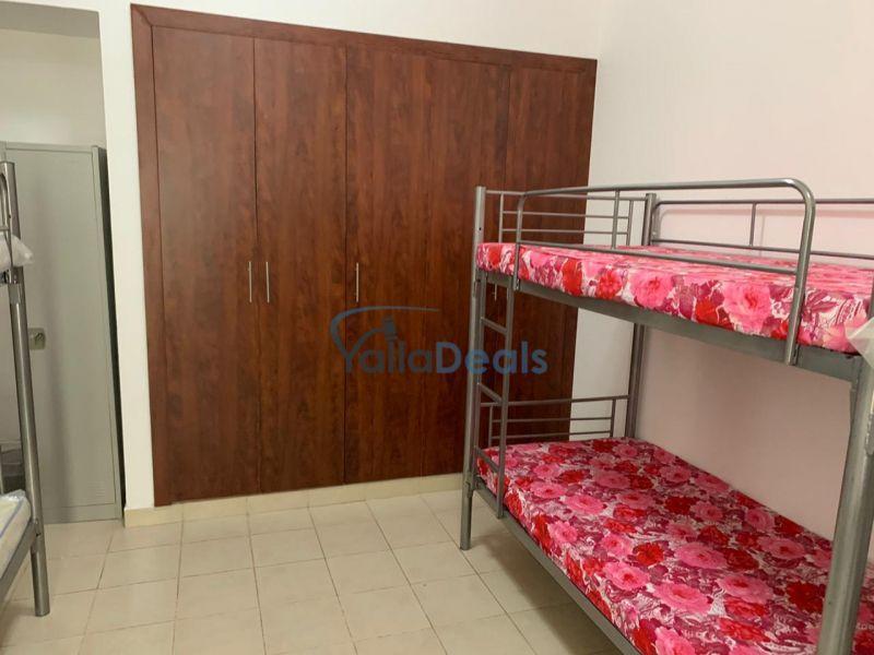 Bed Space for Rent in Dubai Marina, Dubai